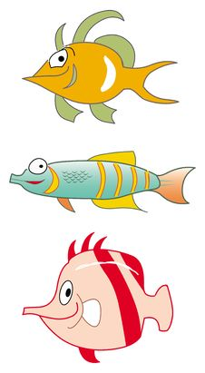 Free Fish Collection Royalty Free Stock Image - 20699746