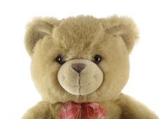 Free Teddy Bear Portrait Royalty Free Stock Photo - 2071425