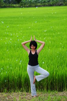 Free Girl Practicing Yoga In Paddy Field Royalty Free Stock Images - 20701649