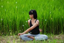 Free Girl Practicing Yoga In Paddy Field Stock Photo - 20701740