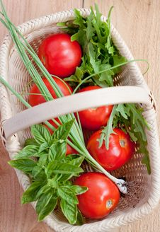 Tomatoes And Herbs In A Basket Stock Images