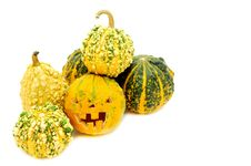 Free Pampkin Stock Images - 20704634