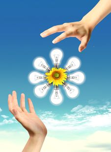 Free A Light Bulb With Sunflower And Sky. Royalty Free Stock Photo - 20708125