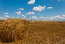 Free Field Hay Bales Stock Image - 20708461