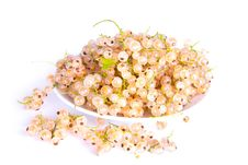 Free White Currants Lying On A Plate Royalty Free Stock Photos - 20712208