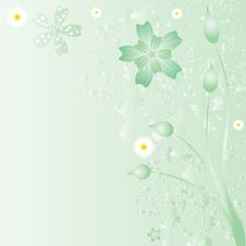 Free Beautiful Floral Background Stock Image - 20712251
