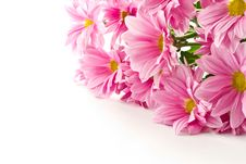 Free Bouquet Of Pink Flowers Stock Image - 20712741