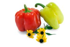 Red And Green Paprika With Yellow Colors Stock Photography