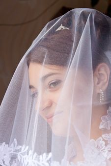 Free Portrait Of The Beautiful Bride Royalty Free Stock Photo - 20713755