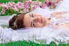 Free Portrait Of A Beautiful Bride Royalty Free Stock Image - 20713896