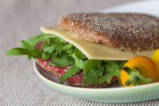 Free Sandwich Stock Images - 20716044