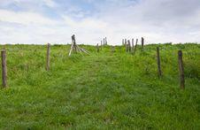 Free Path Upwards Between Fences Stock Photo - 20718870