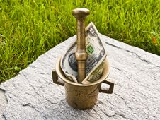 Mortar With Dollar Of Green Grass And Stone Royalty Free Stock Photography