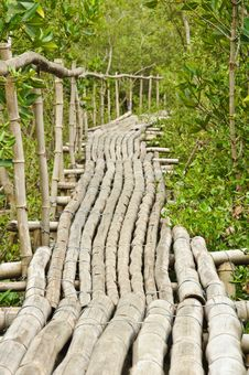Free Bamboo Walkway In Mangrove Forest Stock Photo - 20721290