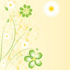 Free Beautiful Floral Background Royalty Free Stock Photo - 20721895