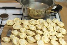 Free Russian Meal Pelmeni Stock Photos - 20723023