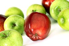 Free Red And Green Apples Stock Photo - 20727010