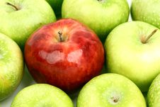Free Red And Green Apples Stock Photo - 20727020