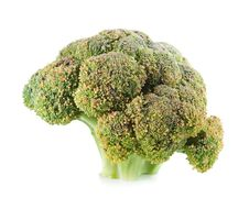 Free Broccoli Royalty Free Stock Images - 20727749