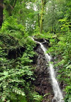 Free Waterfall Of Stresa Royalty Free Stock Photo - 20728715
