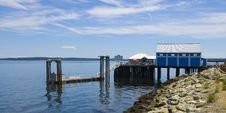Free Resting Sea Gulls On Private Dock Stock Image - 20729751