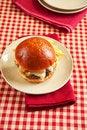 Free Cheeseburger Stock Photo - 20731560