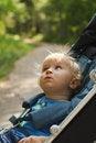 Free Curious Baby In Pram Stock Photo - 20734950
