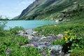 Free Alpine Lake Royalty Free Stock Photos - 20738528