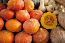 Free Load Of Pumpkins Royalty Free Stock Images - 20730719