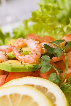Free Salad With Shrimps And Avocado Royalty Free Stock Photography - 20733087