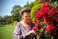 Free Woman In Garden Stock Photos - 20733863
