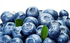 Free Blueberries With Leaves Royalty Free Stock Image - 20734296