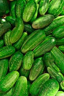 Free Fresh Cucumbers Stock Image - 20734941