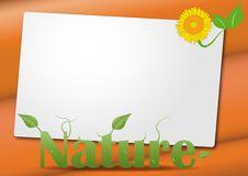 Free Sheet Nature Royalty Free Stock Photo - 20735755