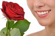 Free Red Rose And A Radiant Smile Stock Images - 20735784