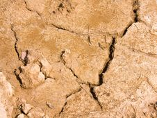 Free Dry Brown Soil Texture Royalty Free Stock Photography - 20737727
