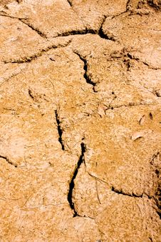 Free Dry Brown Soil Texture Royalty Free Stock Photo - 20737755