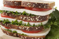 Free Sandwich Stock Images - 20745224