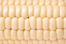 Free Corn Macro Texture Stock Photo - 20742650