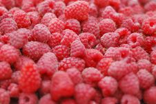 Free Raspberry Royalty Free Stock Image - 20743826