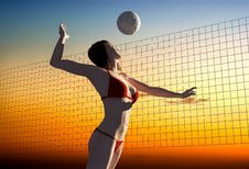Free Volleyball. Stock Photography - 20746572