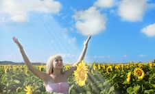Woman In Beauty Field With Sunflowers Royalty Free Stock Photos