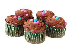 Miniature Chocolate Cupcakes Stock Photography