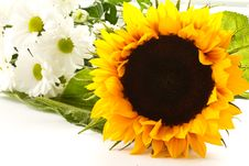 Free A Bouquet Of Beautiful Flowers Royalty Free Stock Photo - 20750085