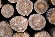 Free Wood Logs Stock Image - 20750551