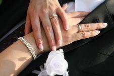 Free Wedding Rings Stock Photos - 20751563