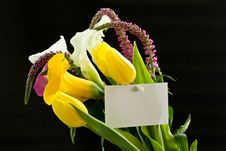 Beautiful Bouquet Of Tulips And Calla Lilies Royalty Free Stock Photo