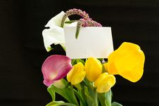 Beautiful Bouquet Of Tulips And Calla Lilies Royalty Free Stock Photos