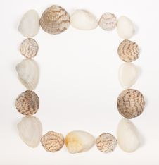 Square Frame Made From Sea Shells On White Stock Images
