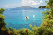 Free Dalmatian Coast Stock Photo - 20755660